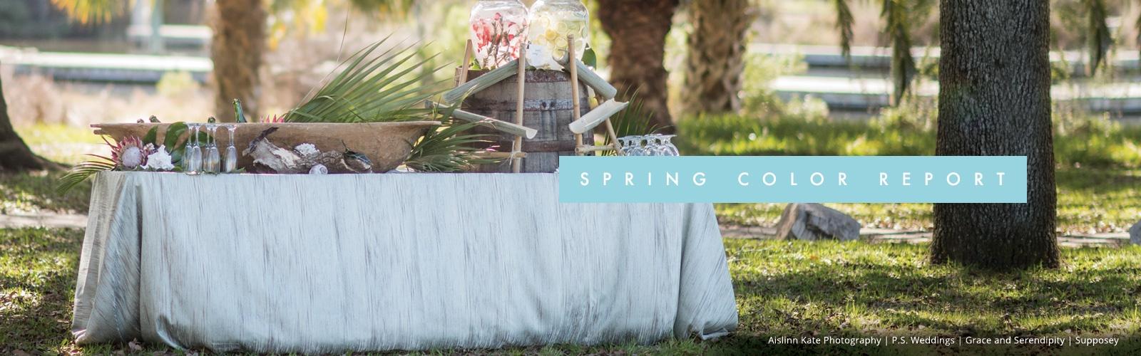 bbj-spring17colorreport-landingpagebanner-new.jpg